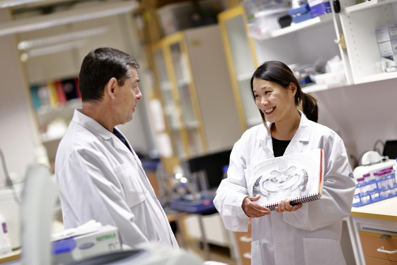 Пристрастие калкоголю регулирует фермент вмозге человека— ученые