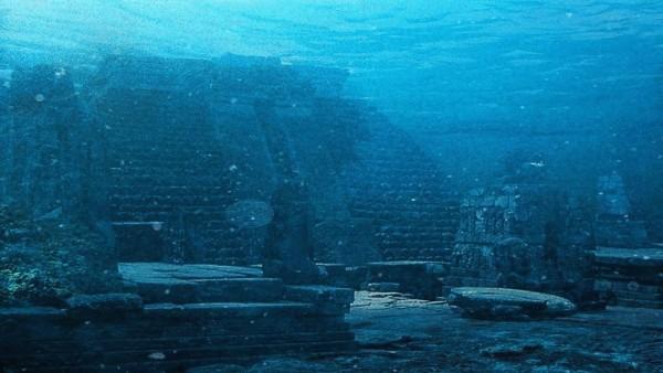 На дне Тихого океана обнаружили неизвестные формы жизни