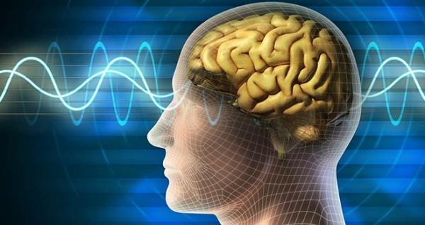 Ученые: Сжатие в части мозга может привести к потере памяти