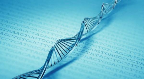 Учёные нашли участки ДНК, отвечающие за депрессию