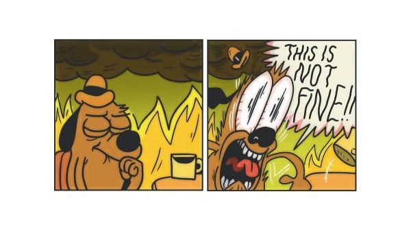 """Популярный интернет-мем """"все в порядке"""" получил неожиданное продолжение"""