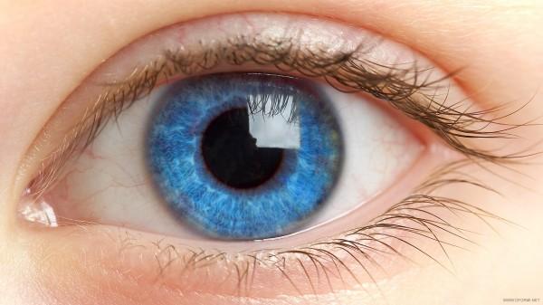 Названы продукты, полезные для зрения