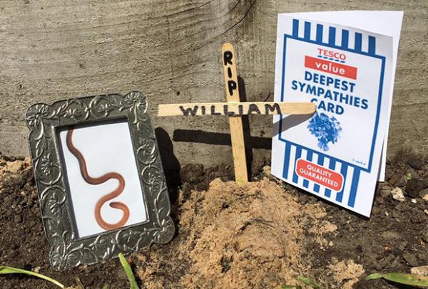 Найденный в огурце мертвый червяк Уильям стал звездой Facebook