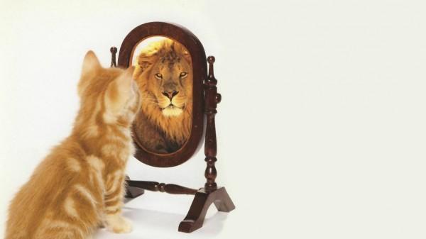 Ученые обнаружили, что вызывает завышенную самооценку
