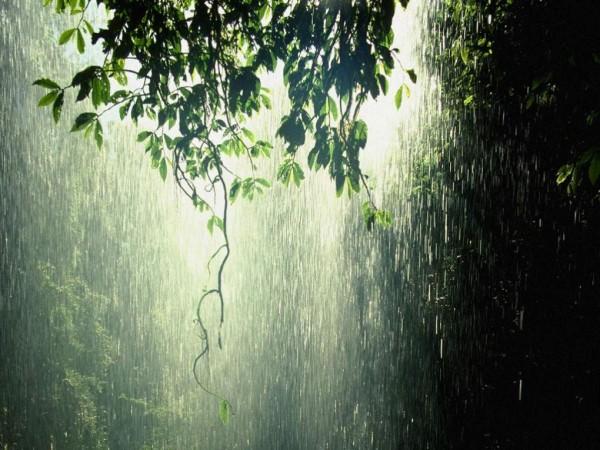 Ученые нашли причину испортившей лето «эпидемии» дождей
