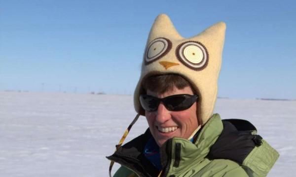 Ученые выяснили, как зимой в Саскачеване ведут себя снежные совы