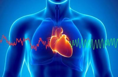 Ученые: К 2060 году количество людей с болезнями сердца возрастет в три раза