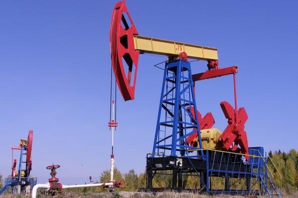 Иран поддержит всевозможные меры ОПЕК для нормализации рынка нефти