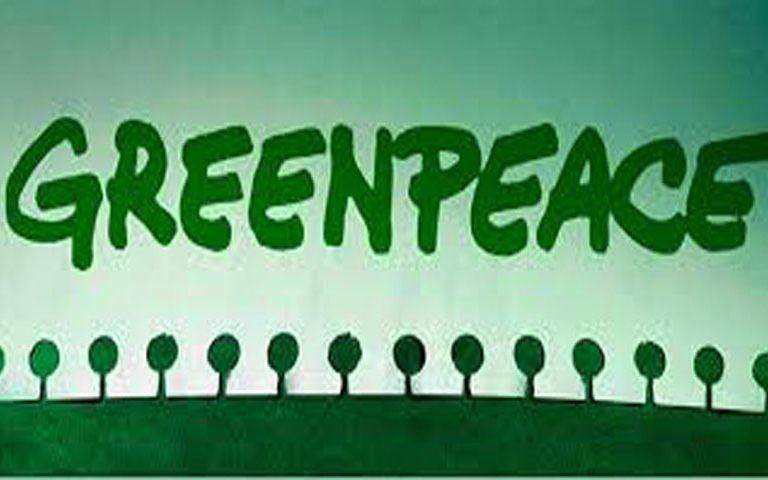 Около 10-ти мужчин напали напалаточный лагерь «Greenpeace России»