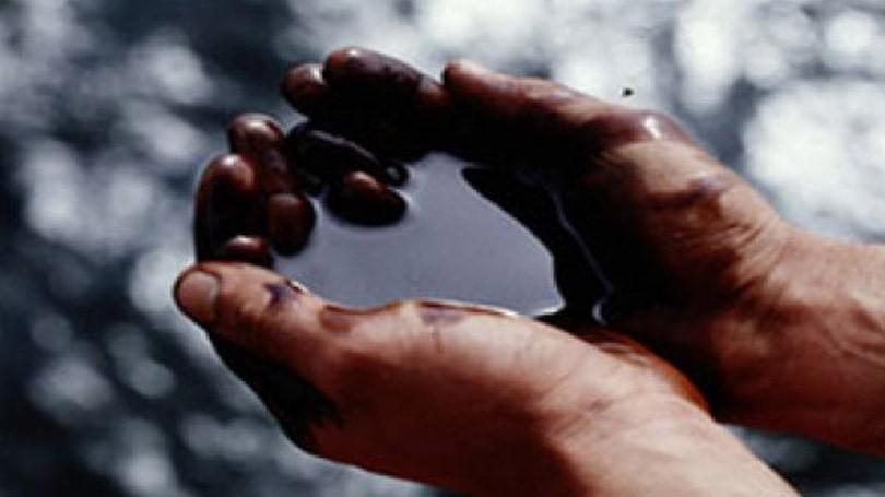 Часть заработка отдобычи полезных ископаемых посоветовали раздать россиянам