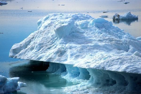 Площадь льда вАрктике уменьшается устрашающими темпами