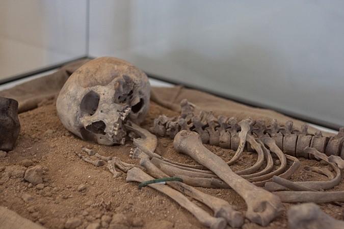 Археологи нашли под водой скелет владельца «компьютера» древних греков