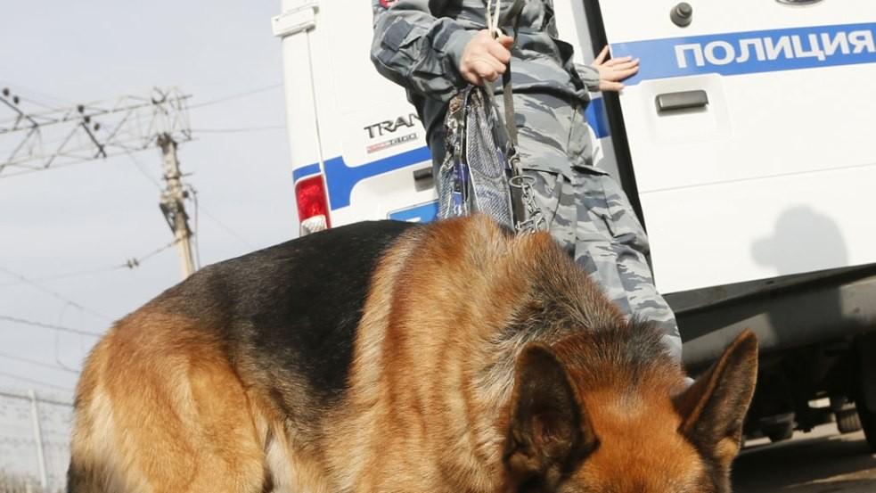 ВПетербурге разыскивают пропавшего врача-анестезиолога