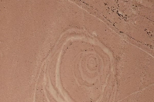 ВПеру обнаружены странные круги наземле