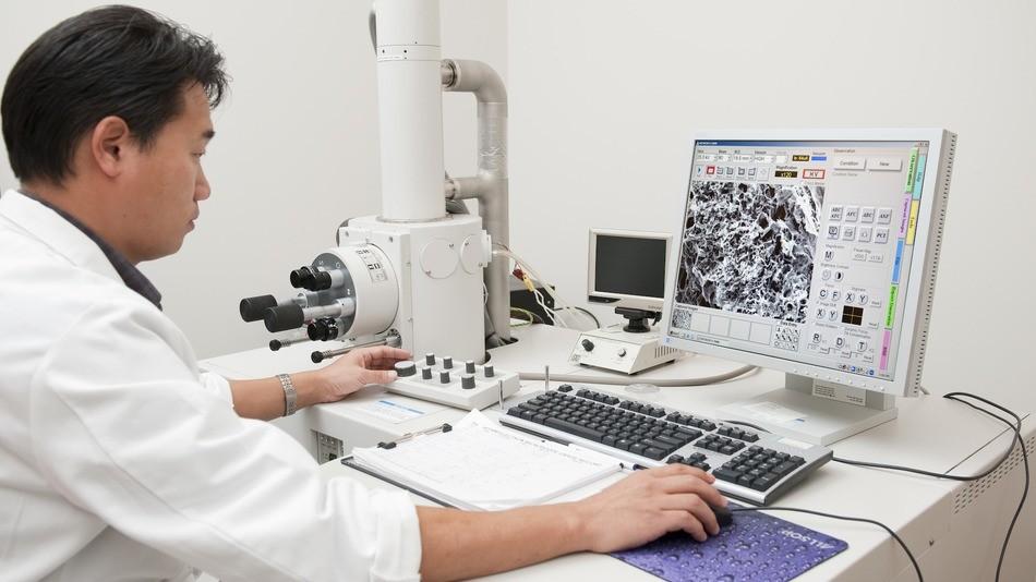 Американские ученые отыскали способ запирать раковые клетки вкамеры