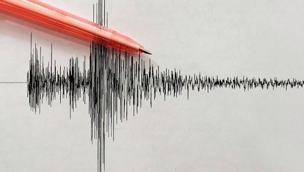 Уберегов Японии случилось землетрясение магнитудой 5,0
