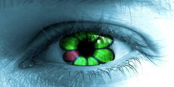 ICQ для Windows обновила видеозвонки и чаты