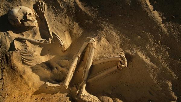 Скелеты, найденные в древнеримской могиле в Лондоне, оказались родом из Азии