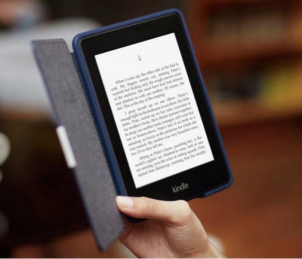Российский хакер заработал на фейковых книгах в Amazon 3 миллиона долларов