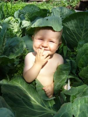 Обманывать ребёнка в вопросах о процессе его рождения недопустимо – учёные