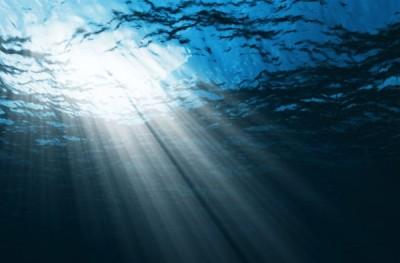 Ученые увеличили число известных человечеству вирусов, которые обитают в океанах, в три раза