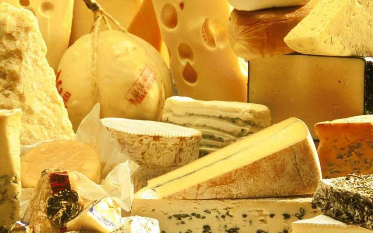 Лидером в РФ по изготовлению сыра стал Алтайский край