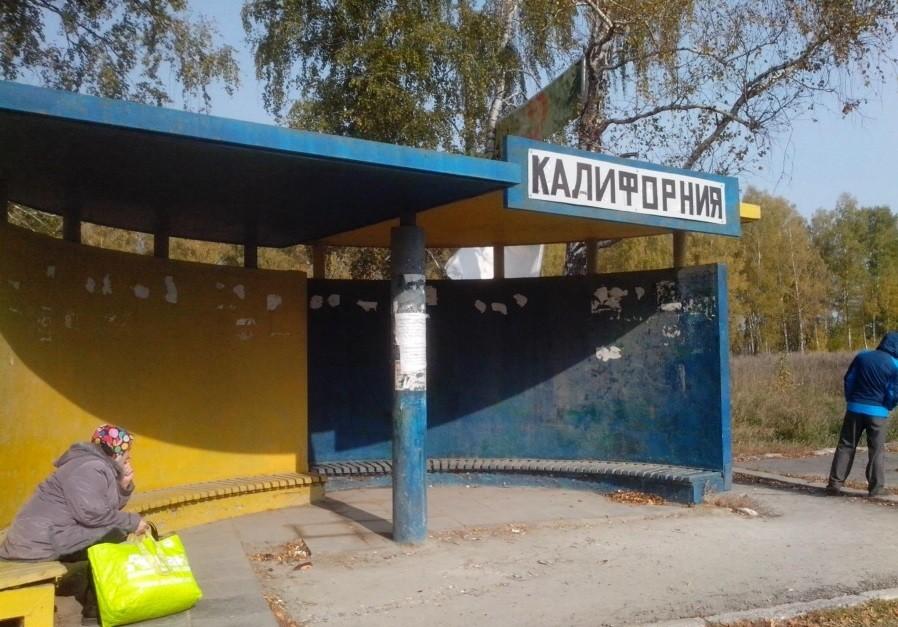 Остановка «Калифорния» возникла под Новосибирском