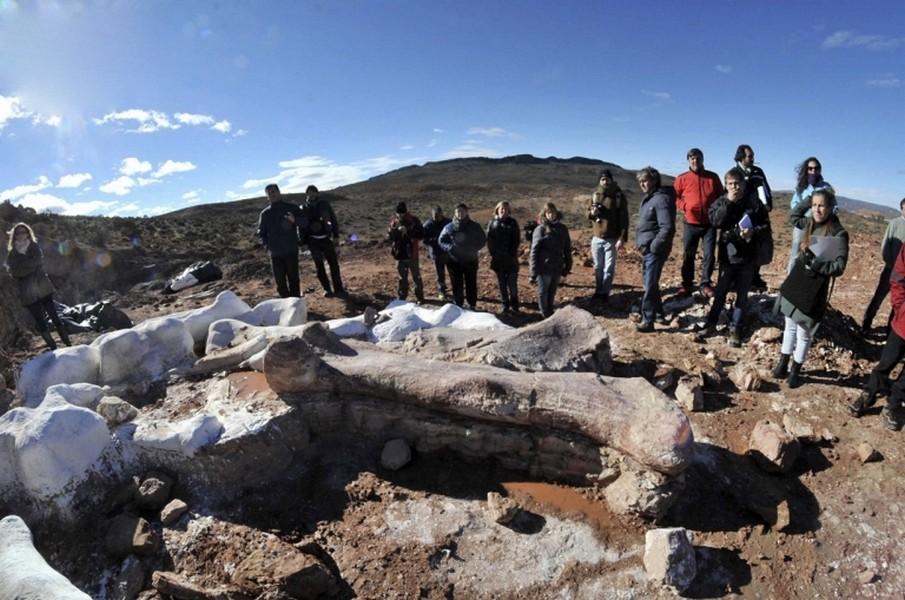 Русский ученый отыскал самого крупного динозавра вЦентральной Азии