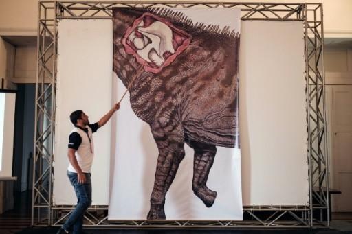ВБразилии найден наибольший вмире динозавр вшкафу