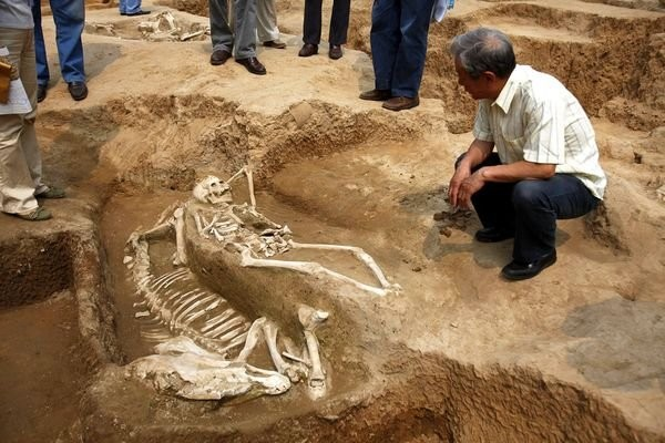 Втайном захоронении вМексике обнаружили останки 600 человек