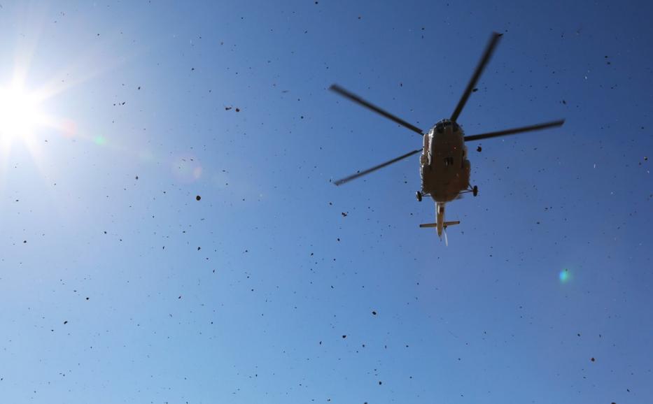 ВАмурской области опрокинулся вертолёт