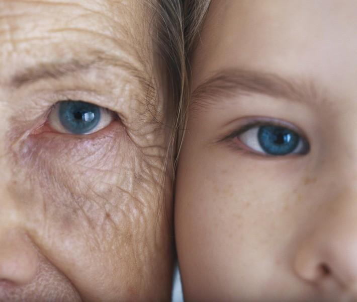 Ученые назаре открытия лекарства против старения