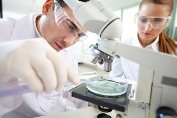 Ученые: Разнообразие микрофлоры кишечника защищает людей отастмы