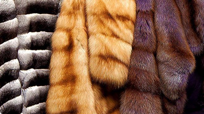 В российской столице изъяли 900 меховых изделий насумму неменее 30 млн. руб.