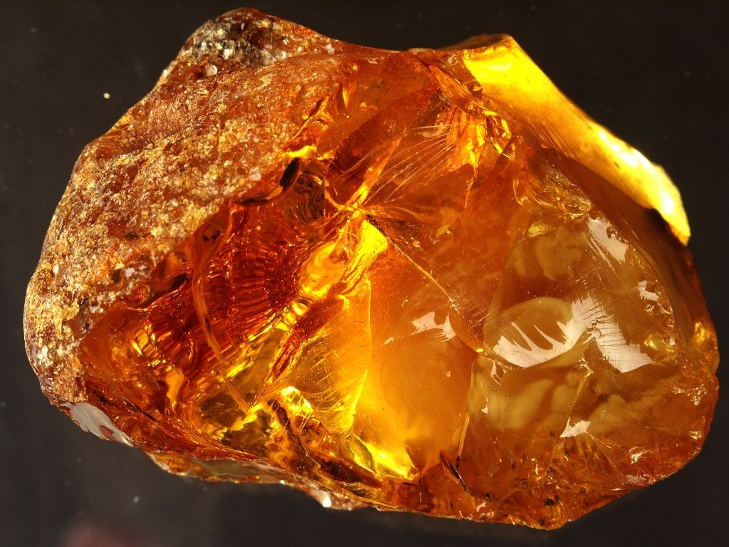 ВСветлогорске самородок янтаря ушел смолотка за1,5 млн руб.