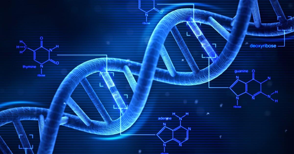 Витамины всостоянии чистить клеточную память— Ученые