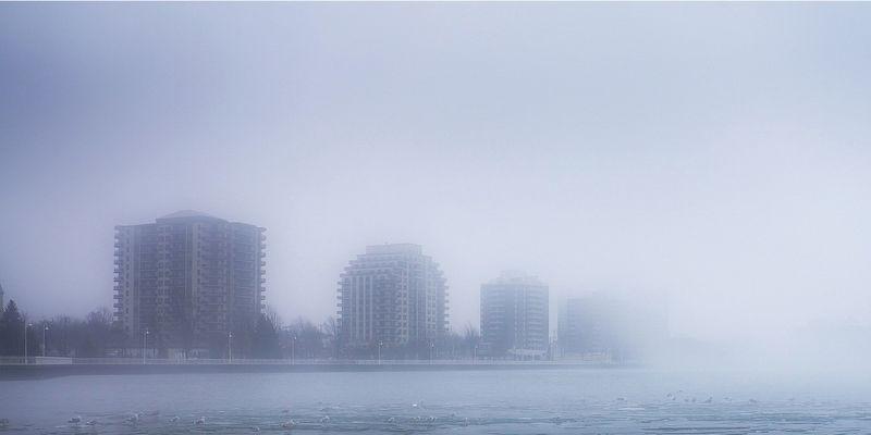 Следующую неделю вПетербурге будет туманно