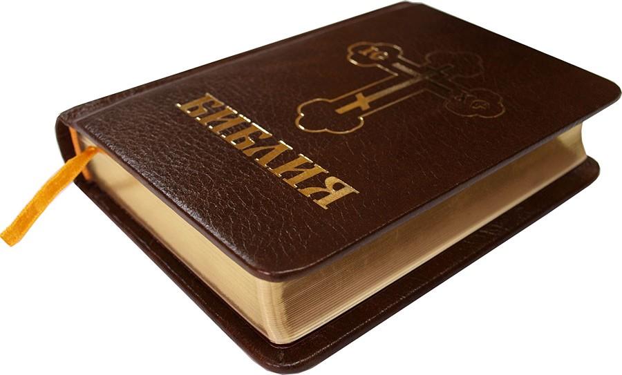 Издание Kingstone выпустило 12 томов комикса на основе Библии