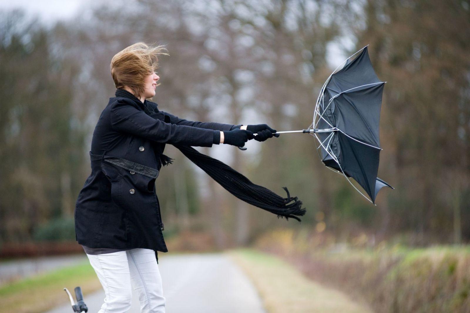 Штормовое предупреждение объявлено вМоскве всвязи сусилением ветра