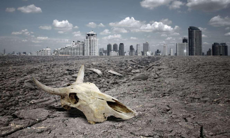Население Земли ждет массовое вымирание— ученые