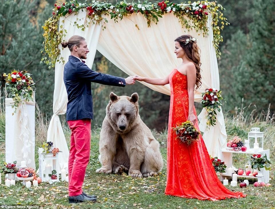 Пару из столицы поженил медведь покличке Степан