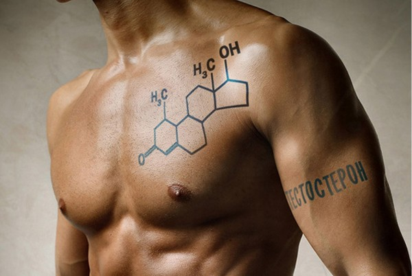 Ученые: Увеличение уровня тестостерона может сделать мужчин агрессивными