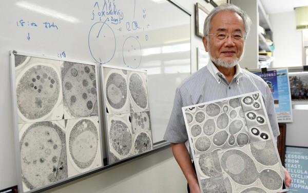 Удостоившееся Нобелевской премии открытие способно продлить жизнь
