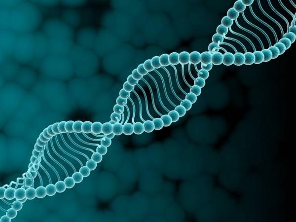 Израильские ученые нашли новые генные особенности аутизма