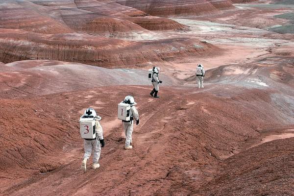 Учёные исследуют возможности выращивания растений на марсианской земле