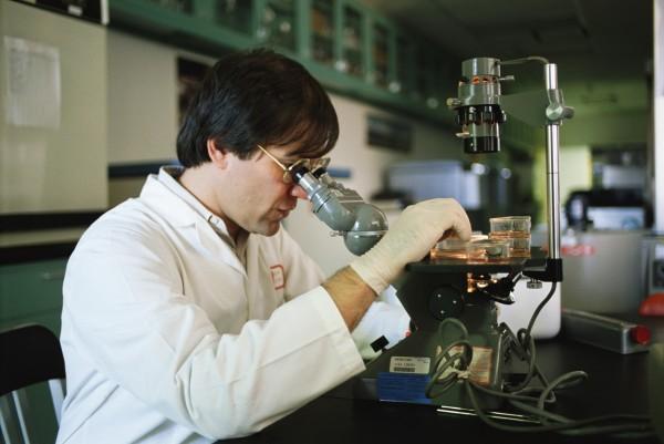 Учёные: Менопауза не является естественным состоянием женского организма