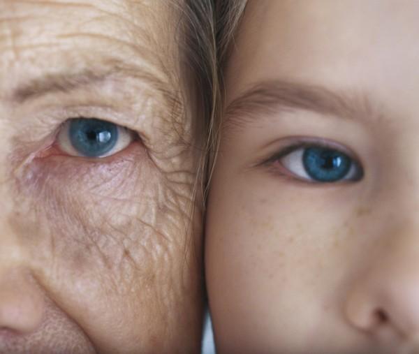 Ученые намерены бороться со старением особым белком