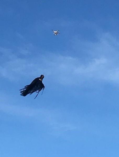 Американец превратил дрон в ведьму из Блэр