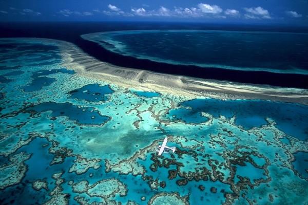 Австралия планирует защитить Большой барьерный риф от загрязнения