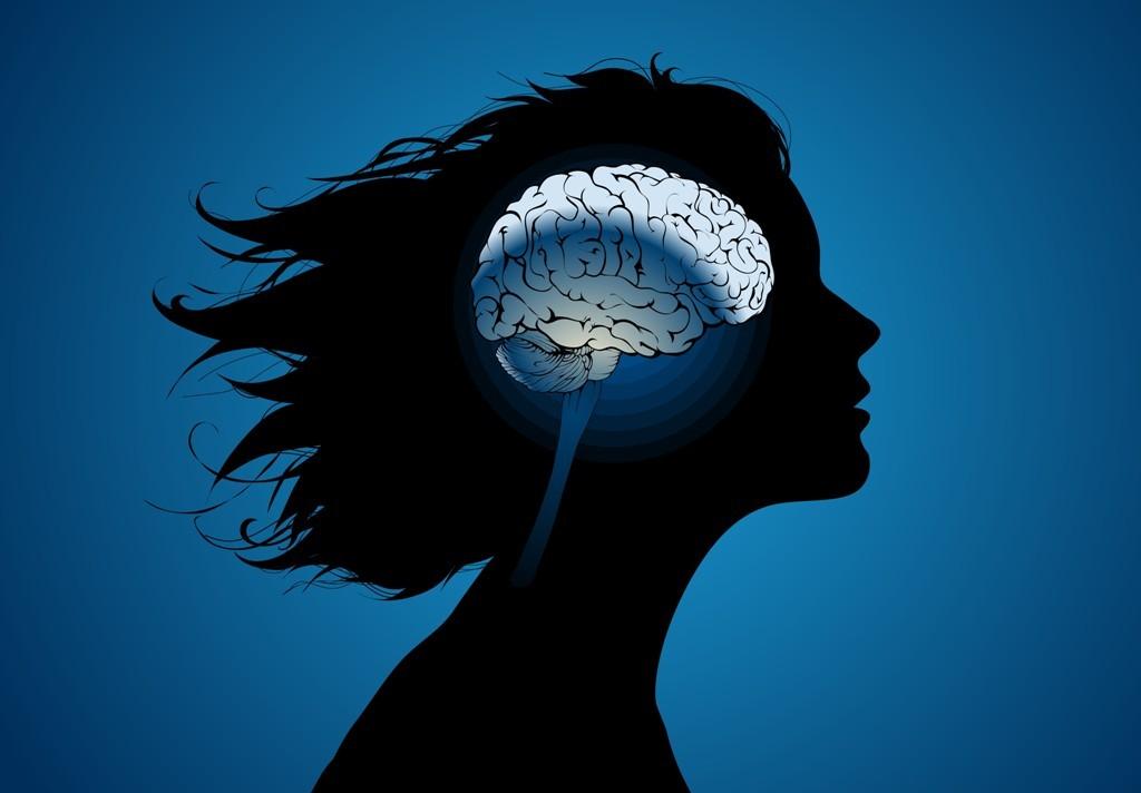 Найдено новое различие между мозгом мужчин иженщин